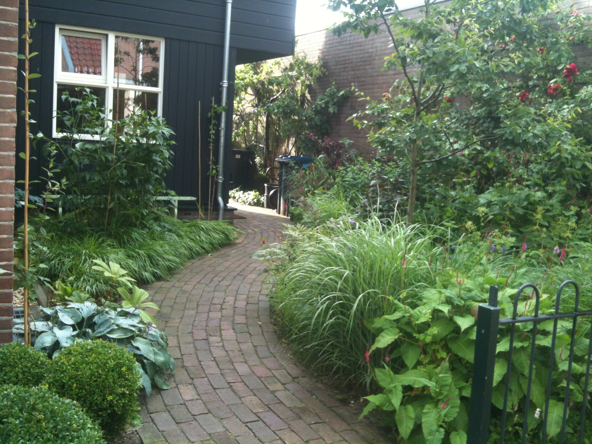My Black And White Garden Paul Roncken