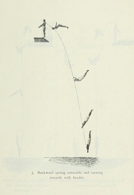 diving diagram
